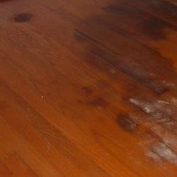 How To Get Water Stains Out Of Wood Floors Ever X